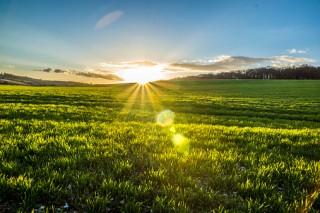 Sun rise at Potten End