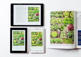 eBook conversion reflowable