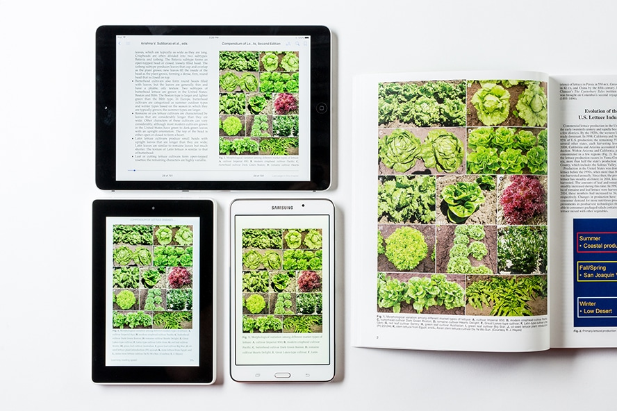 eBook conversion reflowable
