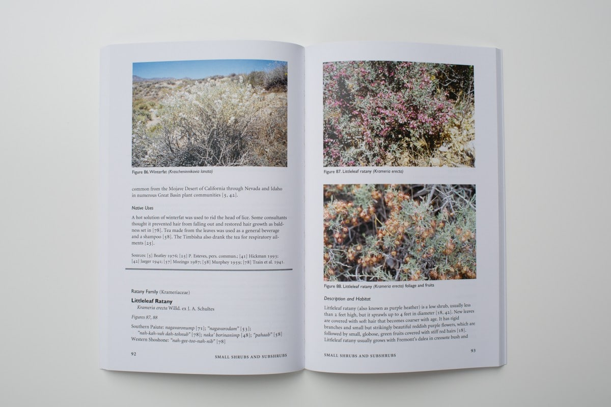 Native Plants of Southern Nevada, An Ethnobotanical Field Guide